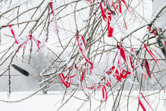 Red ribbon tied on a tree in winter.  stock photos