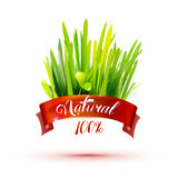 Red ribon with natural emblem and grass Stock Photography