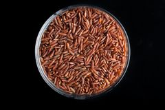 Red rice, grains closeup. Bhutanese. Unpolished, uncooked, natural, diet, raw for traditional asian cuisine, dish Stock Photo