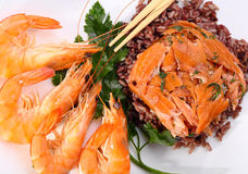 Red rice and shrimp Stock Photos
