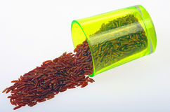 Red rice. Stock Photo