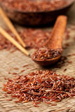 Red rice  on a straw background Royalty Free Stock Photo