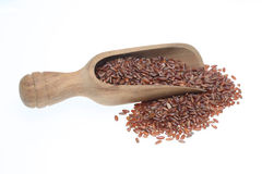 Red rice, a varity called Camargue rice. From France Stock Image