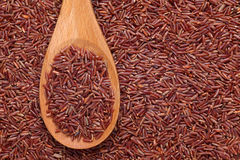 Red rice in a wooden spoon Stock Images