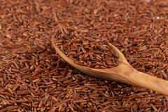 Red rice in a wooden spoon Stock Photography