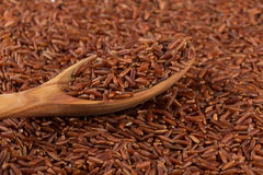 Red rice in a wooden spoon Royalty Free Stock Photos