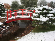 Red ridge and snow falling in Japanese garden Royalty Free Stock Image