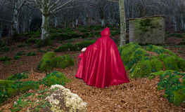 Red riding hood in the dark forest. Portrait of Red riding hood in the dark forest Royalty Free Stock Image