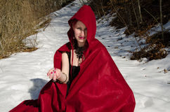 Red Riding Hood in the forest Stock Images