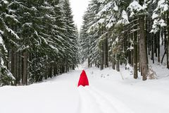 Red riding hood in the forest. Red riding hood in the frozen forest Stock Photo