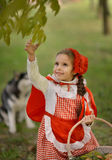 Red Riding Hood and gray wolf in the forest Stock Image