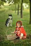 Red Riding Hood and gray wolf in the forest Stock Photos