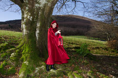 Red riding hood with lantern. Portrait of red riding hood with lantern Stock Photo