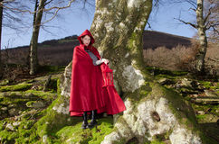 Red Riding Hood with lantern Stock Images