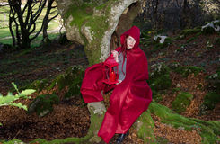 Red riding hood sitting on beech trunk Royalty Free Stock Photo