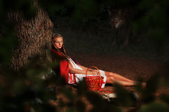 Red riding hood. Is sleeping in a clearing in the woods. Wolf slinks Stock Images