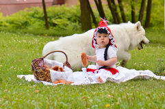 Red riding hood and white wolf Royalty Free Stock Image