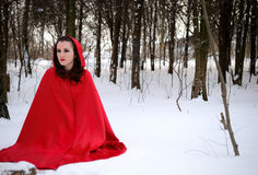 Red Riding Hood in the winter forest Stock Photography