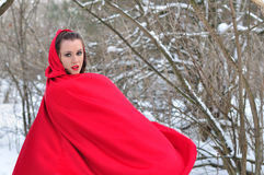 Red Riding Hood in the winter forest Stock Images