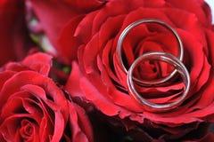 red ringer ro Royaltyfri Fotografi