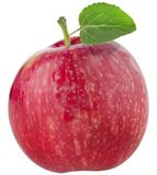 Red ripe apple. Red ripe apple stock images