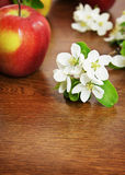 Red ripe apple fruit and apple flower on a wooden table Stock Photography
