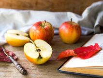 Red ripe apple fruit for autumn and fall food. Red ripe apple fruit on wooden table for autumn and fall food Royalty Free Stock Images