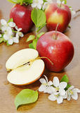 Red ripe apple fruits and apple flower on a wooden table Stock Image