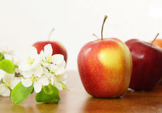 Red ripe apple fruits and white apple flower on a wooden table Stock Photography