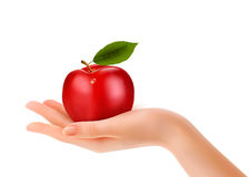 Red ripe apple in a hand. Concept of diet. Stock Photo