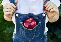 Red apple in the jeans overalls royalty free stock photo