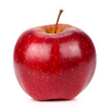 Red ripe apple on a white background Royalty Free Stock Image