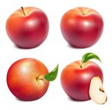 Red ripe apples Royalty Free Stock Photography