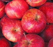 Red ripe apples background Royalty Free Stock Photo