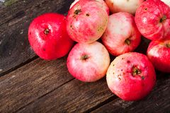 Red ripe apples. Bunch of red ripe apples on the vintage wooden table royalty free stock images