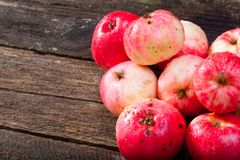 Red ripe apples. Group of red ripe apples on the vintage wooden table stock photos