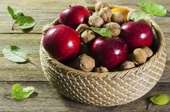Red ripe apples and nuts in a basket on a tree background 2 royalty free stock image