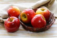 Red ripe apples in a wicker basket Stock Photography