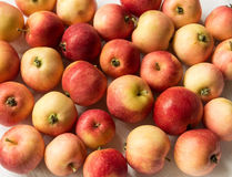 Red, ripe and beautiful apples. A lot. Background stock photo