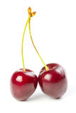 Red ripe cherries Royalty Free Stock Photo