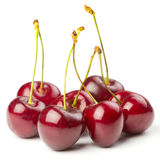 Red ripe cherries Royalty Free Stock Images