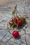 Red ripe cherries Royalty Free Stock Image