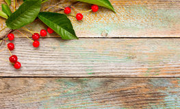 Red ripe cherries on a background of old barn boards Royalty Free Stock Image