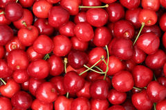 Red ripe cherries forming a background Stock Photos