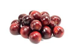 Red ripe cherry plum Stock Photography