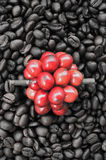 Red ripe coffee on coffee beans backgournd Royalty Free Stock Photography