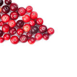 Red, ripe cranberries macro view.  white Royalty Free Stock Image