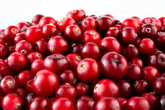 Red ripe cranberries Stock Photo