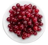 Red ripe cranberries on white plate Stock Photography