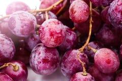 Red ripe grape over white Stock Photos